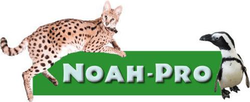 NOAH・PRO